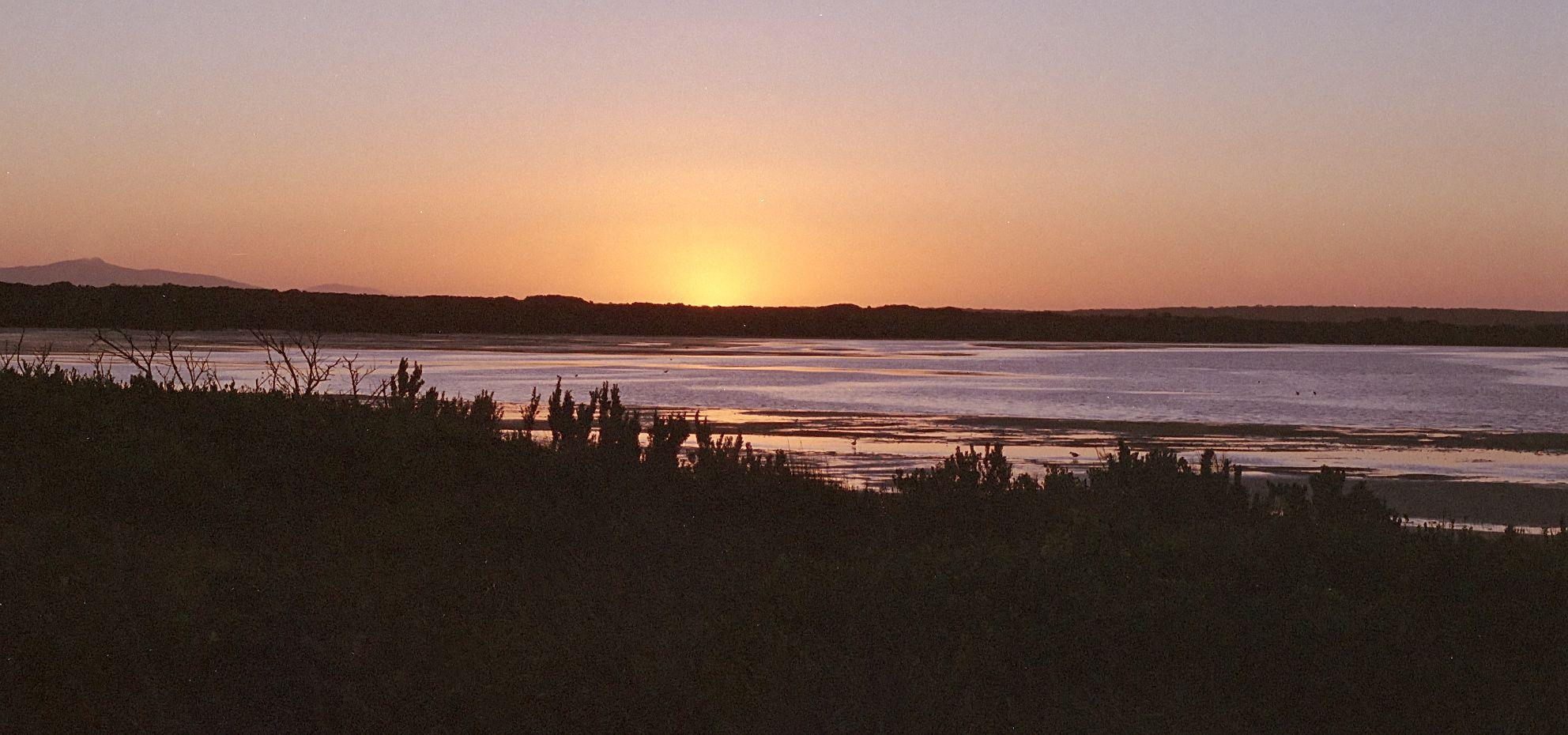 Musselroe Bay - Jan 2021